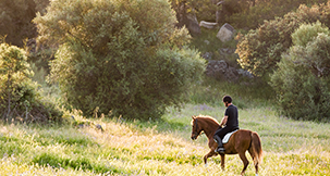 Portugal-Horseback-Riding